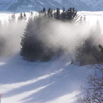Sonnenlicht und Schatten im Nebel