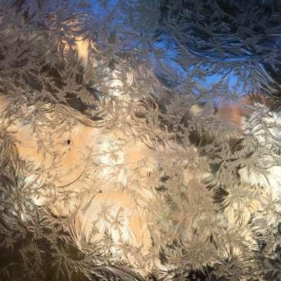 Eisblumen-Glas